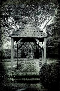 1-old-water-well-steven-ainsworth