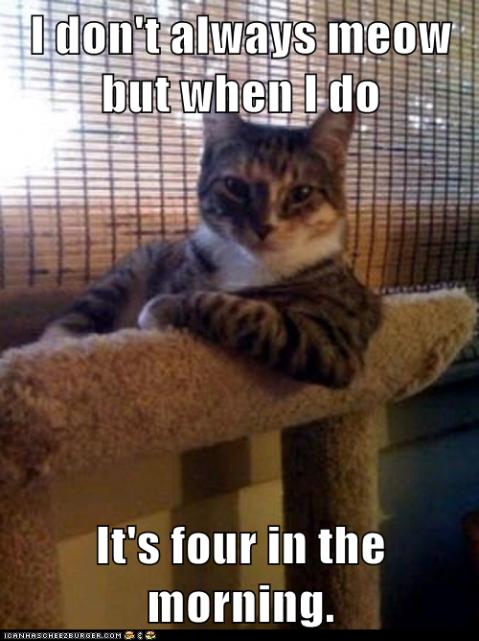I don't always meow