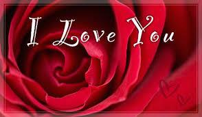 rose I love you