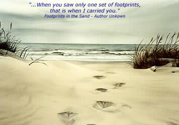 footprints carried you