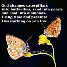 caterpillar-into-butterfly-god-can-change-you